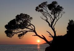 Sunset on the coast Brela Dalmatia Croatia Europe - stock photo