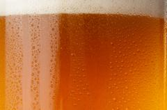 Glass of beer ale - stock photo