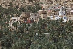 Village with palm trees at the end of Wadi Shab mountain ravine Hadjar Gebirge - stock photo