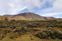 Lava landscape in Teide National Park UNESCO World Natural Heritage Site - stock photo