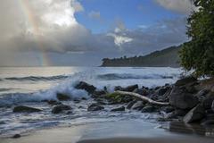 Coast at plage de grande anse, plage de grande anse, deshaies, arrondissement Stock Photos