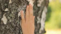 Caring the nature, hand touching a tree, close-up, camera movement Stock Footage
