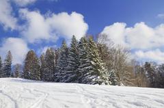 Skiing tracks in a snow-covered winter landscape, leitzachtal, bei elbach, ob Kuvituskuvat
