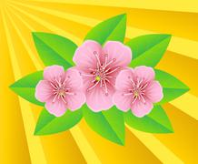 Pink flowers on a background sunbeams Stock Illustration