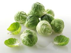 Stock Photo of food photos & pictures of brussels sprouts available as stock photos, picture