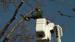 Tree Trimming in Bucket Truck Stock Footage