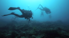 Silhouetted scuba divers exploring coral reef Stock Footage
