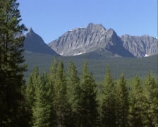 Pan Canadian Rocky Mountains landscape with dense, dark subalpine forests Stock Footage