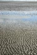 Mudflats at low tide, in the back the eiderstedt peninsula, north frisian isl Stock Photos