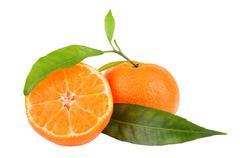 Two tangerines Stock Photos