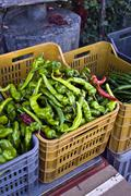 green peppers in a plastic tray, greengrocery in calabria, south of italy, it - stock photo