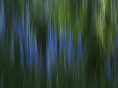 Impressionistic depiction of blue-colored wildflowers Stock Photos