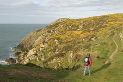 hiker walking along the coast, path, coastpath, pembrokeshire, wales, united  - stock photo