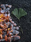 Durable ginkgo (ginkgo biloba) leaf on burning charcoal Stock Photos