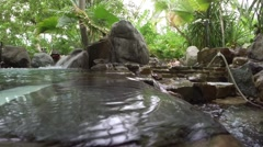 Subtropical pool Stock Footage
