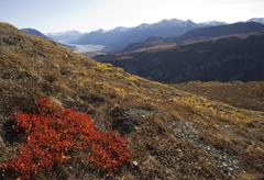 Indian summer, leaves in fall colours, view from sheep mountain into slim\'s  Stock Photos