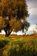 View over the elbe meadows on an autumn evening, radebeul, saxony, germany, e Stock Photos