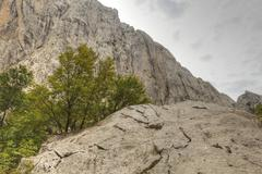 Velika paklenica canyon, paklenica national park, velebit mountains, dalmatia Stock Photos
