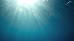 Blue ocean underwater surface with rays of light Stock Footage