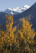 indian summer, leaves in fall colours, view from sheep mountain into slim\'s  - stock photo