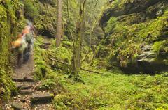 hikers in the teufelsgrund gorge, autumn, saxon switzerland, saxony, germany, - stock photo