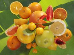 Citrus fruits on banana leaf, oranges, blood oranges, grapefruit, sweeties, k Stock Photos