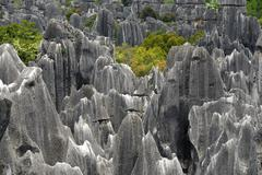 unesco world heritage site, rocks like sculptures, karst topography, shilin s - stock photo