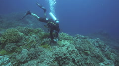 Scuba diver taking underwater photos on coral reef Stock Footage