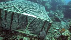 Fish trap on ocean floor Stock Footage