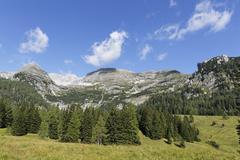 Wurzeralm alp, warscheneck mountain and toter mann mountain, spital am pyhrn, Stock Photos