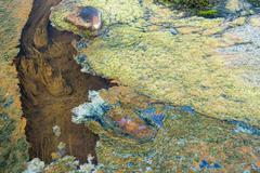 Hop spring with algae and minerals, landmannalaugar, fjallabak nature reserve Stock Photos