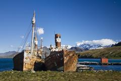 Wrecked whaling ships of the former whaling station of grytviken, king edward Stock Photos