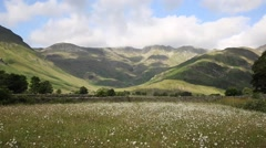 Daisy field with mountains blue sky and clouds Langdale Valley Lake District Stock Footage