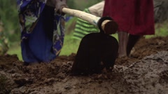 African People from Batwa Tribe Digging in Slow Motion, Uganda, Africa Stock Footage