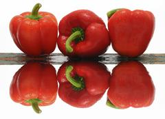 Three red capsicums, with reflection Stock Photos