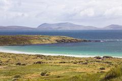 carcass island, west falkland, falkland islands, united kingdom, south americ - stock photo