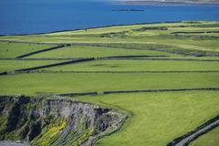 Green meadows, reeneragh peninsula, ring of kerry, county kerry, ireland, eur Stock Photos