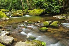 Stock Photo of rio savegre, san gerardo de dota, costa rica, central america