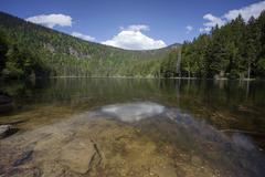 grosser arbersee lake with reflections, bavarian forest, bavaria, germany, eu - stock photo