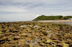 French atlantic coast at low tide, near saint-jean-de-luz, aquitaine, départ Stock Photos