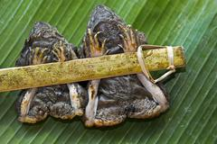 two grilled frogs tied to a bamboo stick served on a banana leaf, as a snack, - stock photo