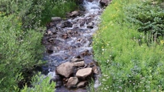 Beautiful Cascading Mountain Stream - Panning Up Stock Footage