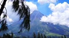 Mayon Volcano Mayon Volcano pine tree branches foreground Stock Footage