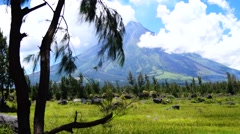 Mayon Volcano pine tree branches foreground Stock Footage