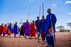 maasai men in their ritual dance in their village in tanzania, africa - stock photo