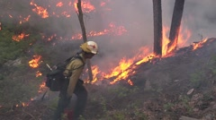Female Firefighter walking up hill then disappears into heavy smoke Stock Footage