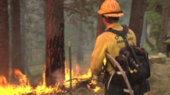 Firefighter controlling back fire with water hose along mountain road Stock Footage