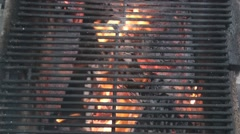 Grilling sausage on the fire pit Stock Footage