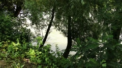 River Tisza in Hungary 4 riverbank Stock Footage