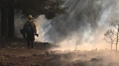 Firefighters standing watch over burned out area, sunlight streaming thru smoke - stock footage